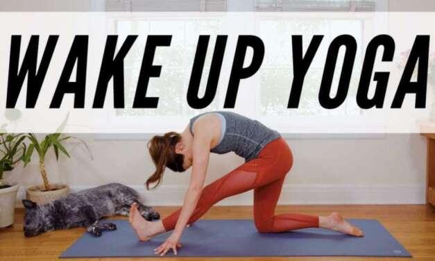 Yoga Para Iniciantes: FORTALECENDO E ALONGANDO O CORPO TODO | Fernanda Yoga
