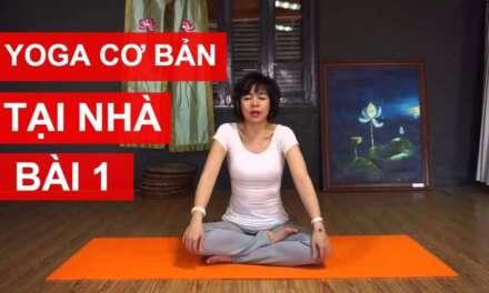 Yoga cơ bản tại nhà – Bài 1: Kéo dãn, làm mềm cơ và khớp để có thể luyện tập Yoga cùng Nguyễn Hiếu