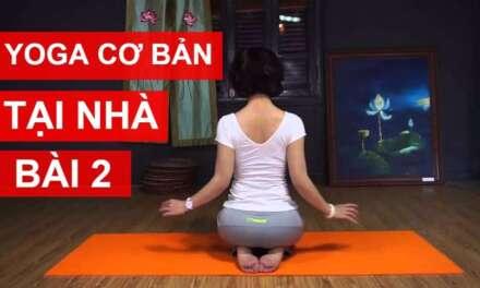 Yoga CÆ¡ Bản Tại Nhà – Bài 2: Gia Tăng Sức Mạnh Cho CÆ¡ Bắp Và Các Khá»›p XÆ°Æ¡ng Cùng Nguyá»…n Hiếu Yoga