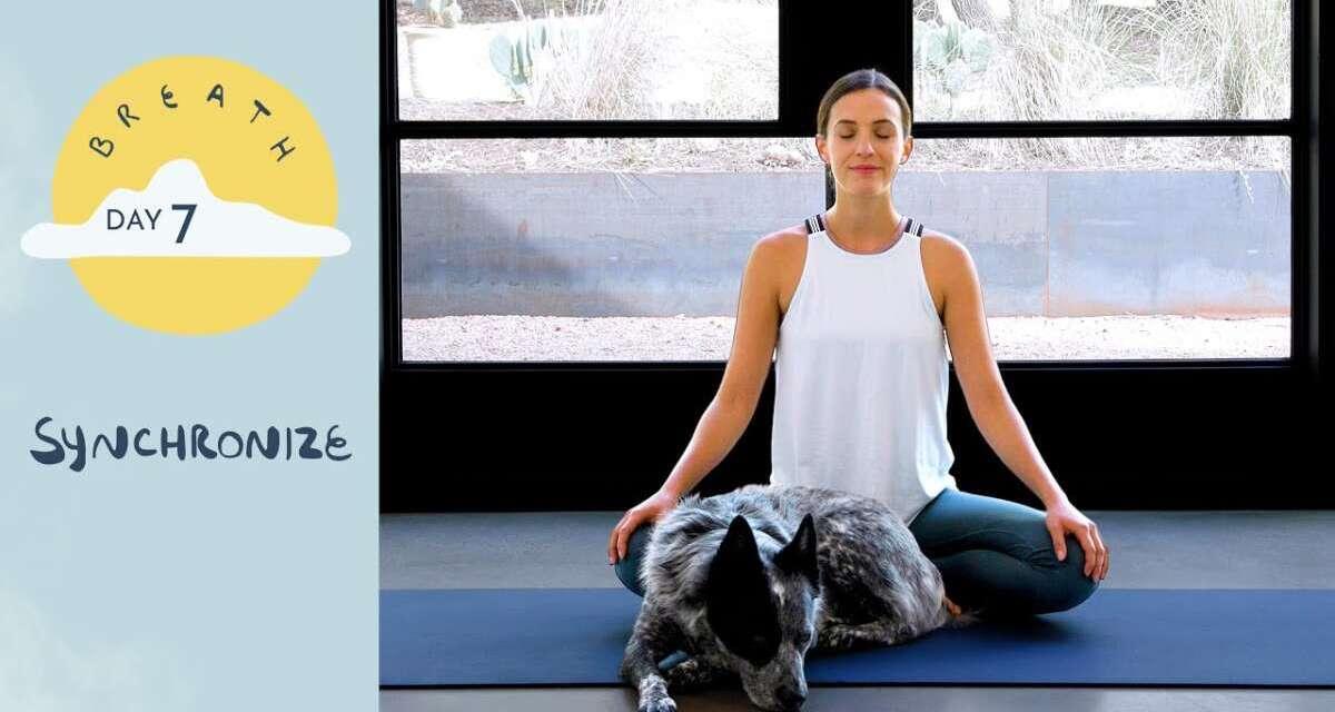Day 7 – Synchronize     BREATH – A 30 Day Yoga Journey