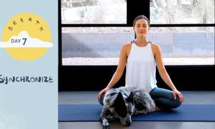 Day 7 – Synchronize  |  BREATH – A 30 Day Yoga Journey