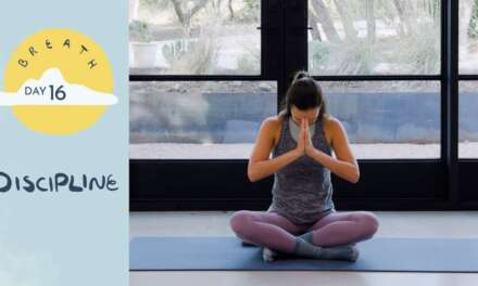 Day 16 – Discipline |  BREATH – A 30 Day Yoga Journey
