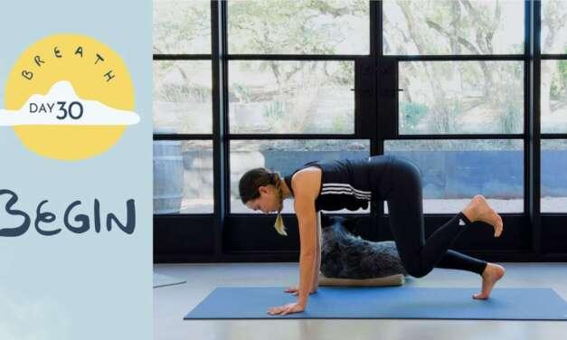 Day 30 – Begin |  BREATH – A 30 Day Yoga Journey