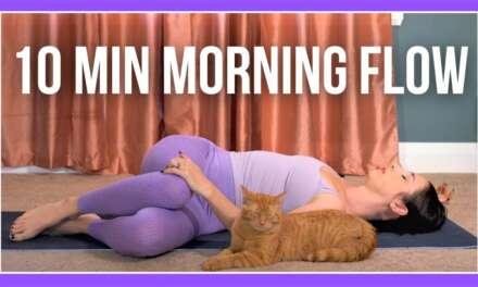 10 Min Morning Yoga Flow (feat. TACO😻)