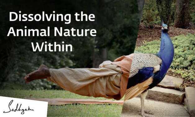 Dissolving The Animal Nature Within | International Day Of Yoga