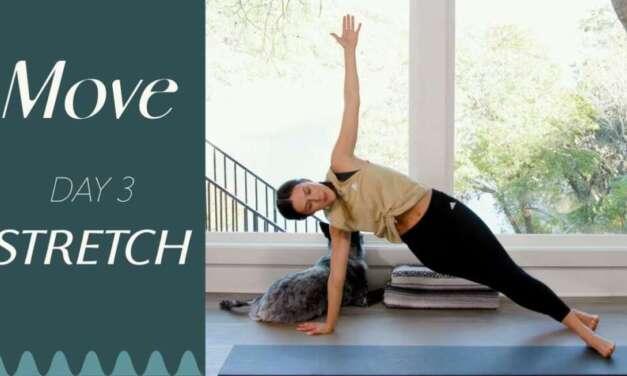 Power Vinyasa Flow Yoga Class – Five Parks Yoga