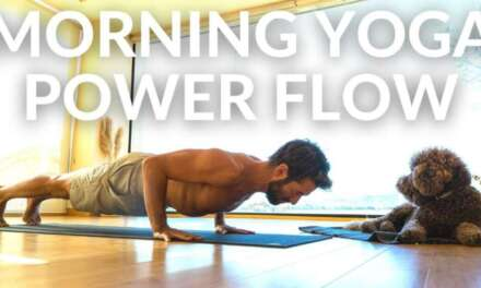 Sun Salutations & Yoga With Animals – Yoga For Kids
