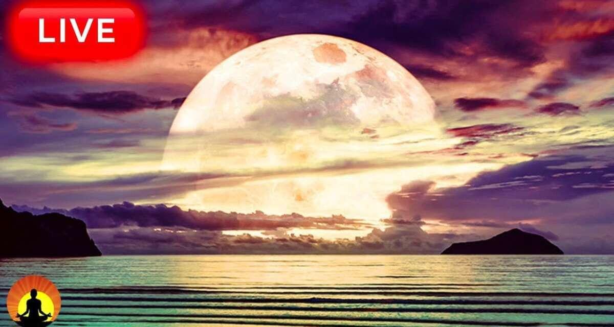 🔴Relaxing Sleep Music 24/7, Sleep Meditation, Insomnia, Calming Music, Yoga, Spa, Sleeping Music
