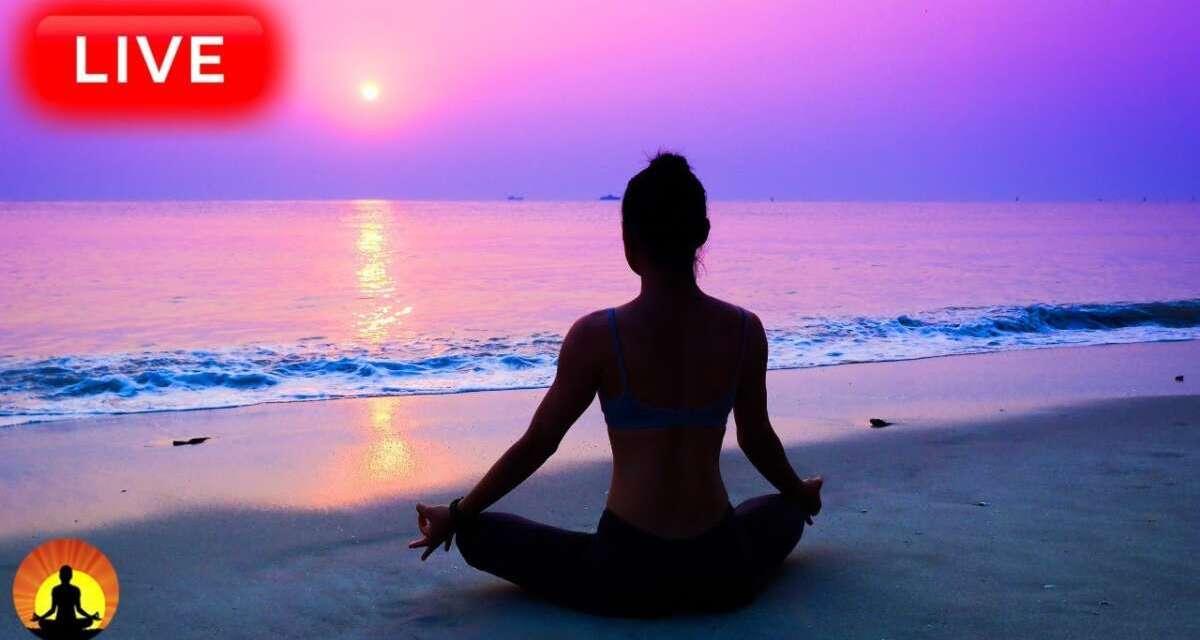 🔴 Relaxing Music 24/7, Stress Relief Music, Meditation Music, Sleep Music, Zen, Study, Meditation