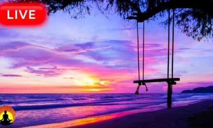 🔴Relaxing Music 24/7, Stress Relief Music, Meditation Music, Sleep Music, Spa, Study Music, Yoga