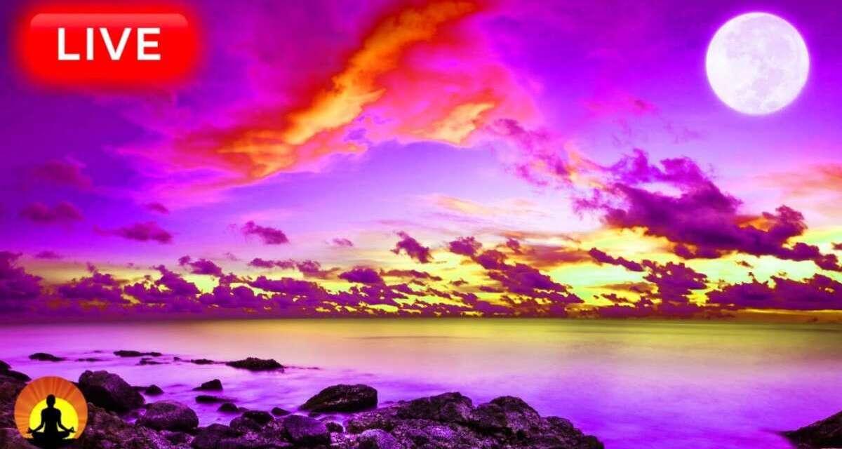 🔴 Relaxing Sleep Music 24/7, Calm Music, Sleeping Music, Meditation Music, Yoga, Study Music, Sleep