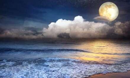 Relaxing Sleep Music 24/7, Meditation, Deep Sleep Music, Insomnia, Sleep, Yoga, Spa, Sleep Music