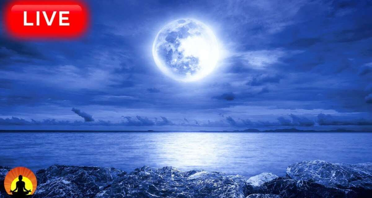 🔴Sleep Music 24/7, Sleep Meditation, Spa, Relaxing Music, Insomnia, Meditation Music, Study, Sleep