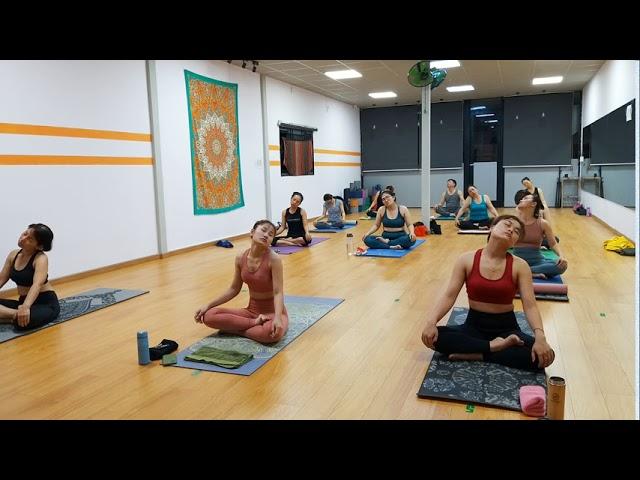 Yoga Giúp Giảm đau Lưng, Mỏi Vai